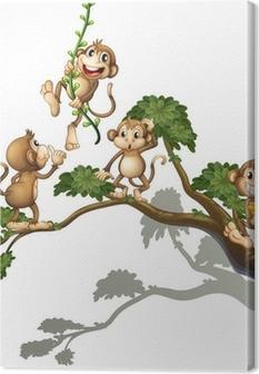 Leinwandbild Ein Baum mit vier Affen