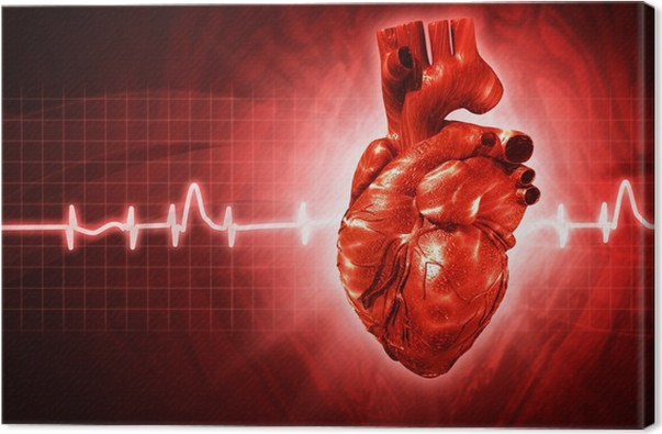 Leinwandbild EKG-abstrakte Hintergründe mit 3D gerendert ...