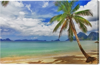 Leinwandbild Entspannende Tropenlandschaft