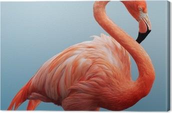 Leinwandbild Flamingo