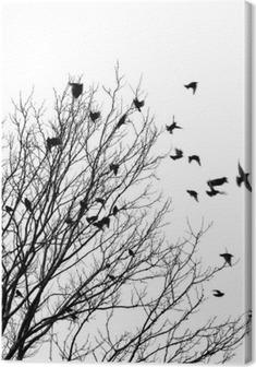 Leinwandbild Flying birds