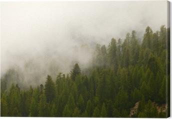 Leinwandbild Foggy Wald