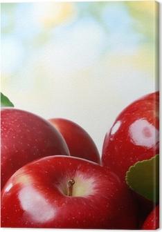 Leinwandbild Frische Äpfel