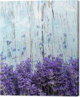 Leinwandbild Frische Lavendel auf Holz