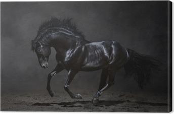 Leinwandbild Galoppierende schwarze Pferd auf dunklem Hintergrund