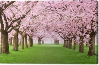 Leinwandbild Gartenanlage in voller Blütenpracht