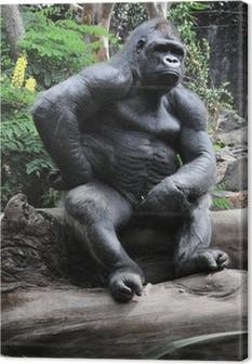 Leinwandbild Gorilla