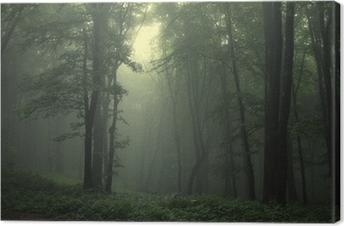 Leinwandbild Grüner Wald nach regen