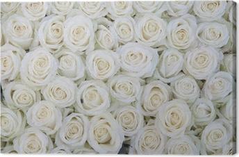 Leinwandbild Gruppe von weißen Rosen nach einer Regendusche