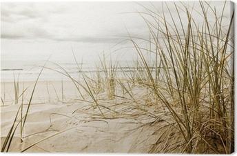 Leinwandbild Hohe Gräser am Strand in der Nahaufnahme