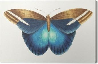 Leinwandbild Illustration von Tiergrafik