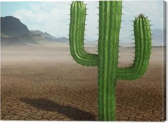 Leinwandbild Kaktus in der Wüste