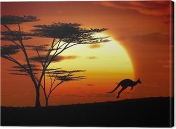 Leinwandbild Känguru Sonnenuntergang australien