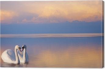 Leinwandbild Kunst schöne Zwei weiße Schwäne auf einem See