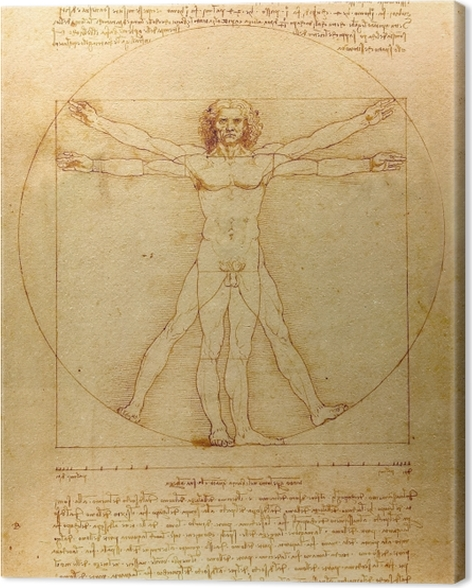 Leinwandbild Leonardo da Vinci - Vitruvianischer Mensch - Reproduktion