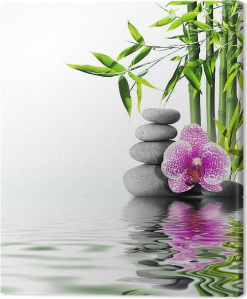 Leinwandbild Lila Orchidee Blume Ende Bambus auf dem Wasser • Pixers ...