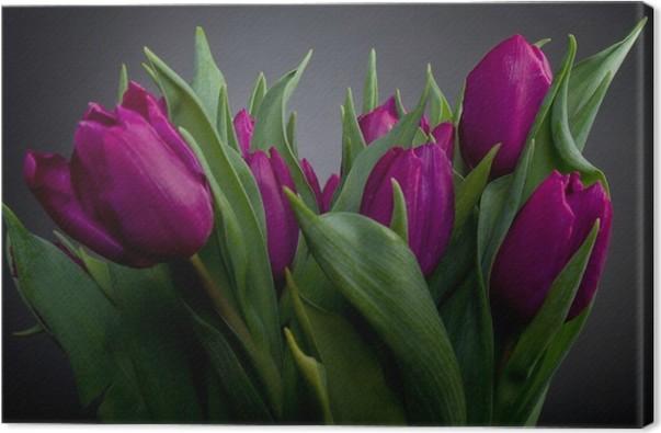 Leinwandbild Lila Tulpen in schwarz • Pixers® - Wir leben, um zu ...