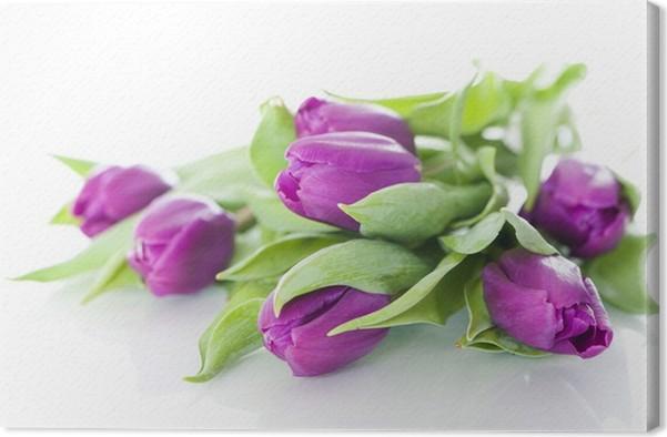 Leinwandbild Lila Tulpen - Lila Tulpen • Pixers® - Wir leben, um zu ...