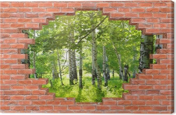Leinwandbild Loch in der Wand - Sommer. Birkenwald. - Durchbruch in der Wand