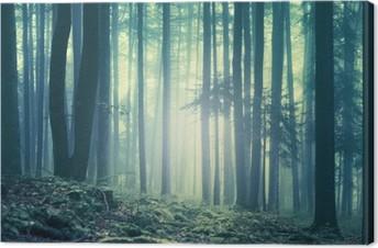 Leinwandbild Magische blau grün gesättigt nebligen Wald Bäume Landschaft. Farbfiltereffekt eingesetzt. Bild wurde in Süd-Ost-Slowenien, Europa.