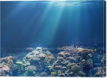 Leinwandbild Meer oder Ozean Unterwasser-Korallenriff