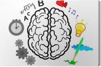 Leinwandbild Merkmale der Gehirnhälften