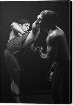 Leinwandbild MMA - Mixed martial Künstler kämpfen - Tritte