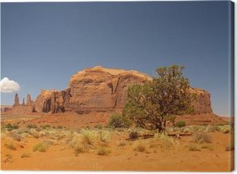 Leinwandbild Monument valley