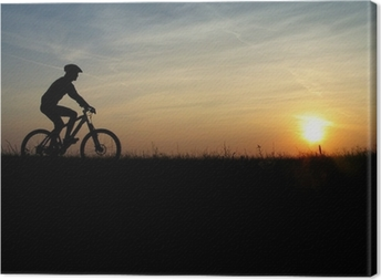Leinwandbild Mountainbiker