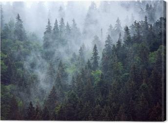 Leinwandbild Neblige Landschaft mit Tannenwald im Hippie-Weinlese-Retrostil