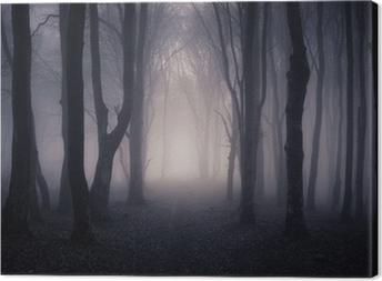 Leinwandbild Pfad durch einen dunklen Wald bei Nacht