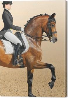 Leinwandbild Pferdesport - Dressur, closeup