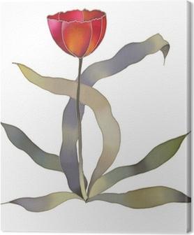 Leinwandbild Rote Tulpe auf weißem Hintergrund
