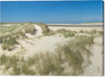 Leinwandbild Sanddünen an der Küste