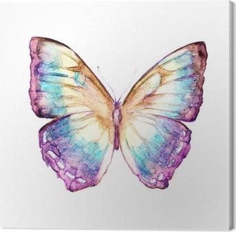 Leinwandbild Schmetterlinge Design