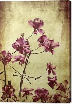 Leinwandbild Schöne Grunge Hintergrund mit Magnolien