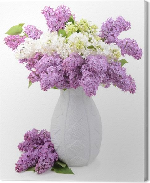Leinwandbild Schöne lila Blumen in der Vase isoliert auf weiß ...