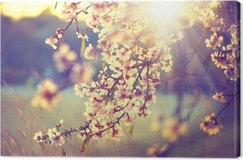 Leinwandbild Schöne Natur-Szene mit blühenden Baum und Sonne Flare