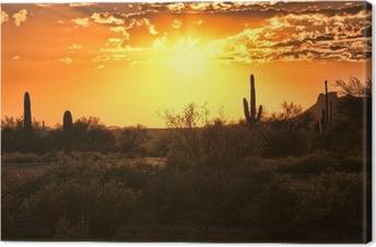 Leinwandbild Schöner Sonnenuntergang Blick auf die Wüste von Arizona mit Kakteen
