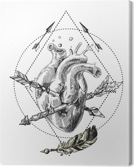 Leinwandbild Skizze des menschlichen Herzens • Pixers® - Wir leben ...