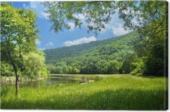 Leinwandbild Sommer Landschaft mit Fluss und blauer Himmel