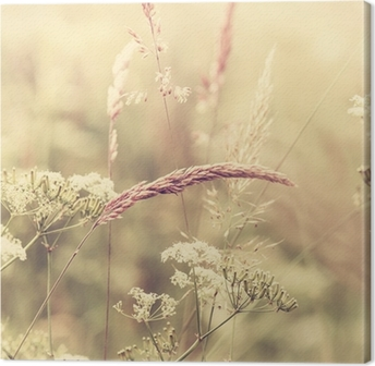 Leinwandbild Sommerwiese