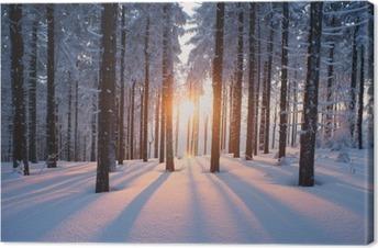Leinwandbild Sonnenuntergang im Winterwald