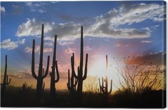 Leinwandbild Sonnenuntergang und Saguaro Kaktus im Saguaro Nationalpark