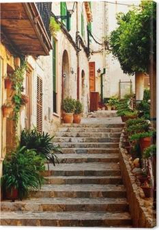 Leinwandbild Street in Valldemossa Dorf auf Mallorca
