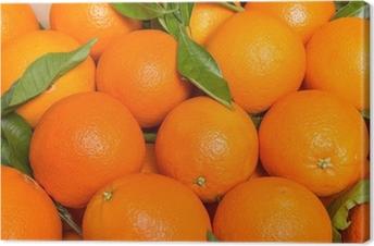 Leinwandbild Tasty valencianischen Orangen frisch gesammelten