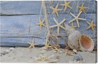 Leinwandbild Urlaubserinnerung: Posthornschnecke, Seesterne und Fischernetz
