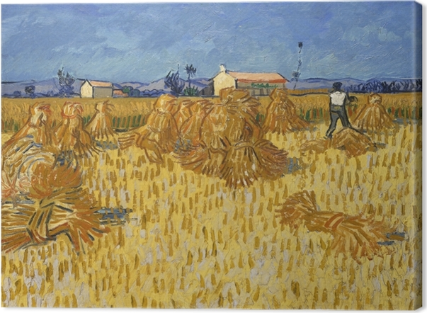 Leinwandbild Vincent van Gogh - Ernte in der Provence - Reproductions