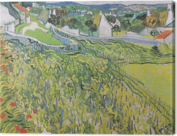 Leinwandbild Vincent van Gogh - Weinberge mit Blick auf Auvers - Reproductions