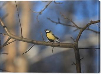 Leinwandbild Vogel